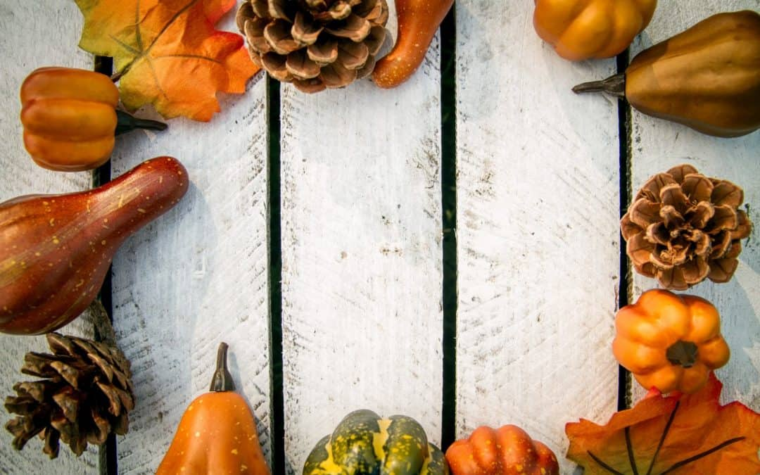 Fun Fall Recipes